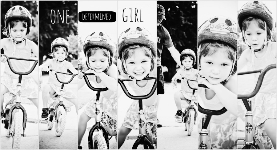 PicMonkeybike Collage